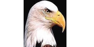 34th Annual Gathering of Eagles 2020