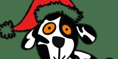 Charlie House Santa Fun Run 2019