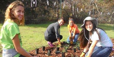High School Earth Stewards at McClellan Ranch Preserve
