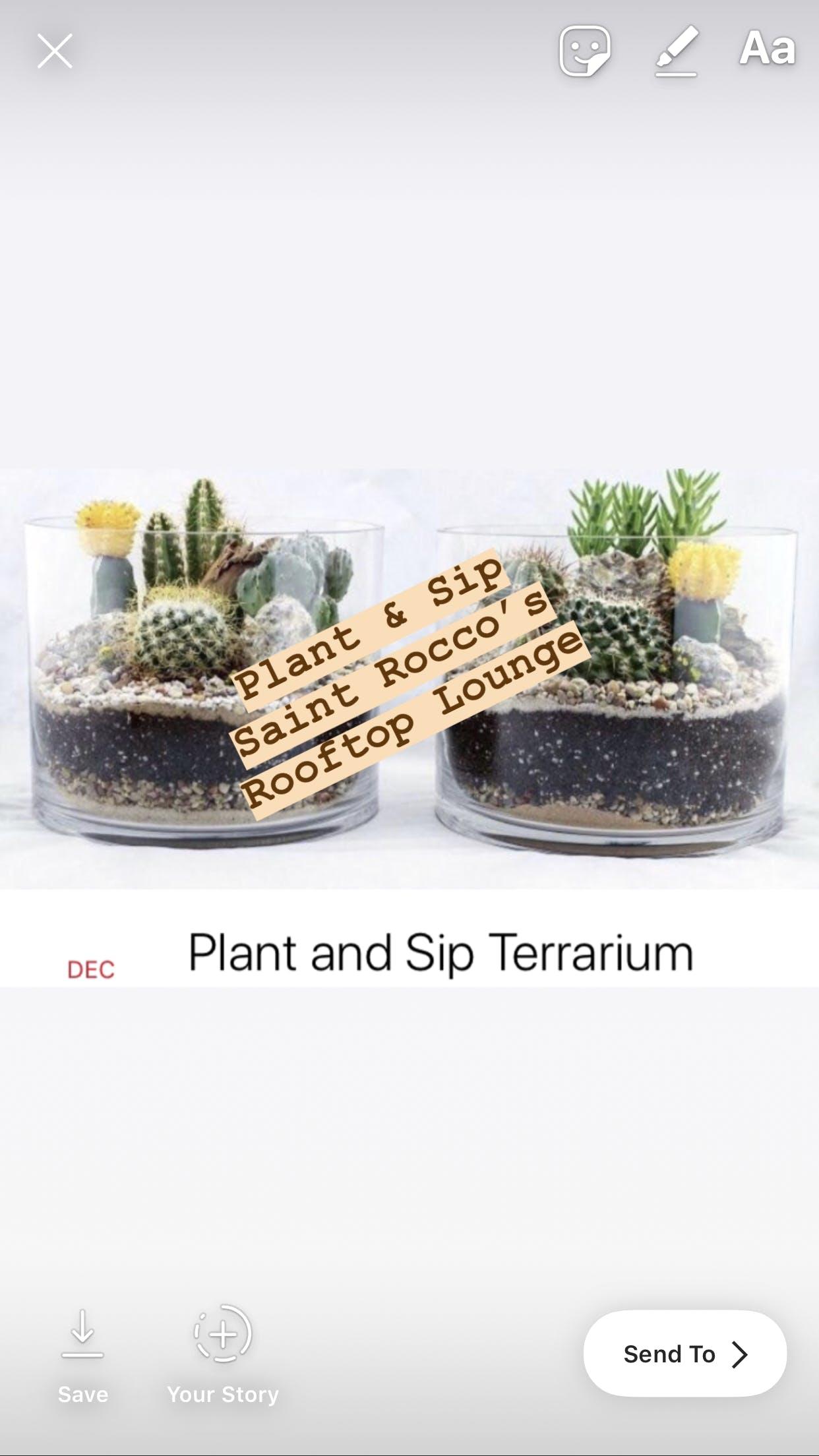 Terrarium Plant Party @ Saint Rocco's Rooftop