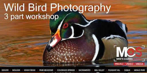 Wild Bird Photography 3 Part workshop - Park Meadows