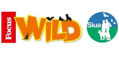 Giocare Educando con Focus Wild