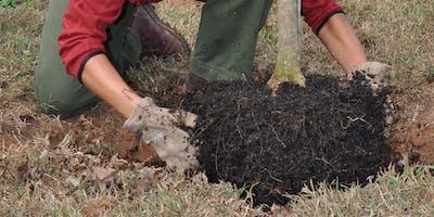 Tree Care Workshops