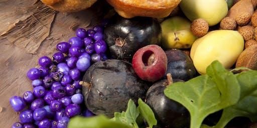 Bush Food Picnic