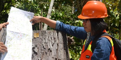 Local lessons to global implications – pathways to effective forest-related policies