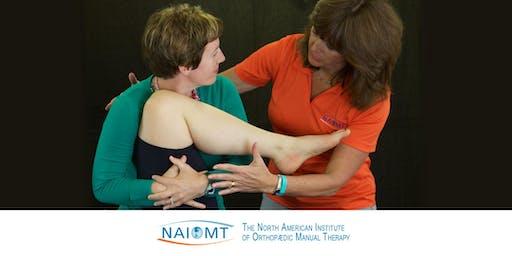 NAIOMT C-616 Cervical Spine II [Orlando]2019