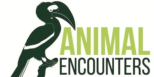 Merrist Wood Animal Encounters Tour