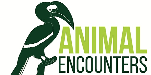 Merrist Wood Animal Encounters Tour