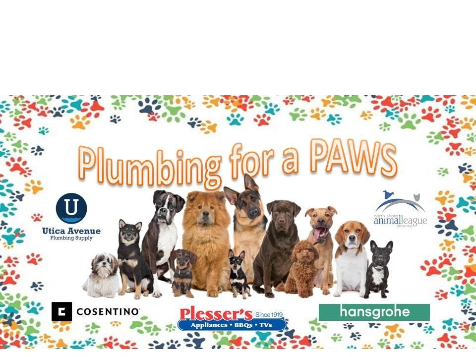 Plumbing For A Paws