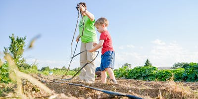 Volunteer at an Organic Garden (Jovial Concepts) with Project Helping