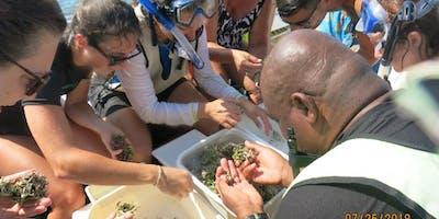 Zoo & Aquarium Educators Workshop