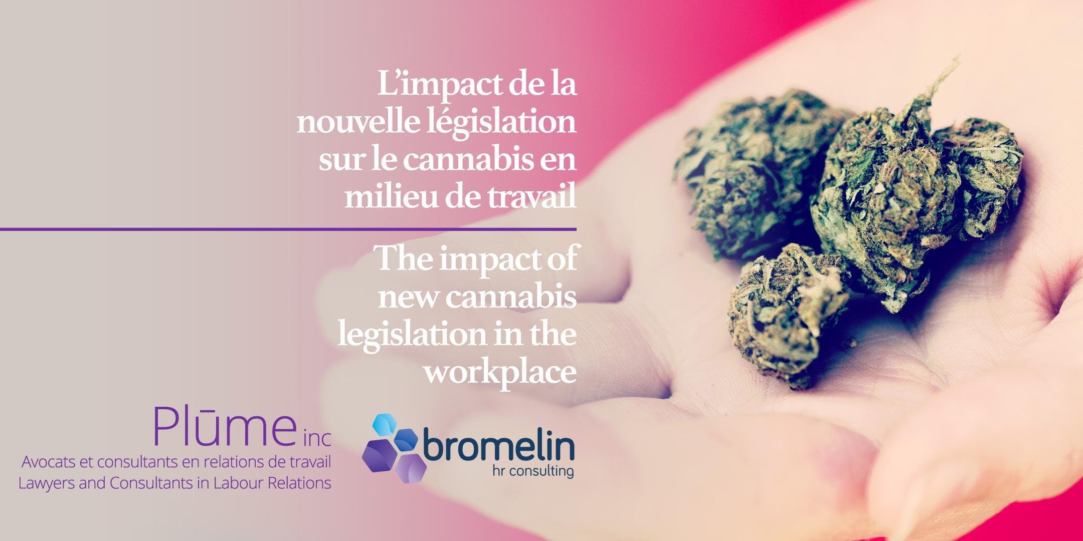 L'impact de la nouvelle législation sur le ca