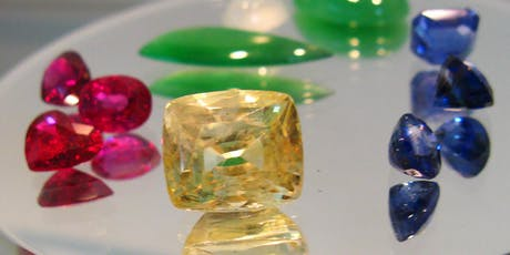 A101 Real or Fake? - Understanding natural gem materials tickets