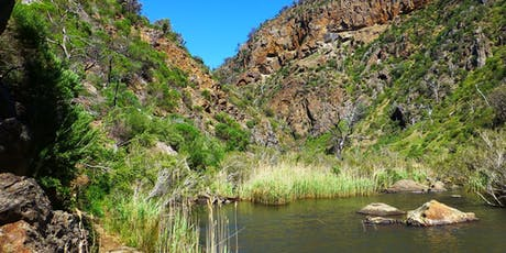 Werribee Gorge Scenic Rim 11-13kms, 23rd of Feb, 2020 tickets