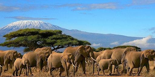 Mt. Kilimanjaro Climb + Music Festival in Tanzania