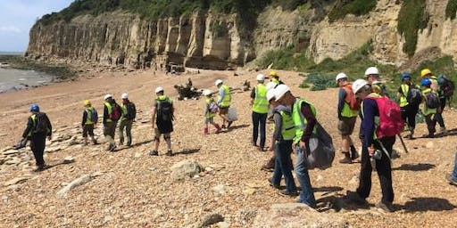 Pett Level (Hastings), Sussex - GEOLOGICAL AND FOSSIL FIELD TRIP