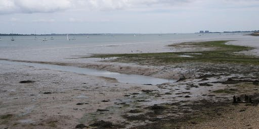Lee-on-Solent, Hampshire - GEOLOGICAL AND FOSSIL FIELD TRIP