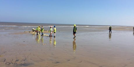 Walton-on-the-Naze, Essex - GEOLOGICAL AND FOSSIL FIELD TRIP