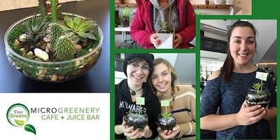 Succulent & Cacti Terrarium Workshop