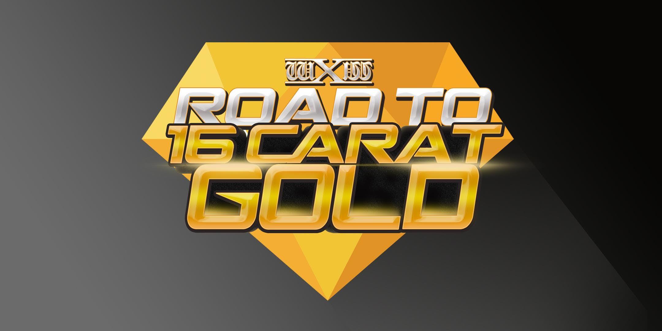 wXw Wrestling: Road to 16 Carat Gold 2019 - L