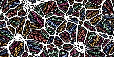 Neurociências na Mediação