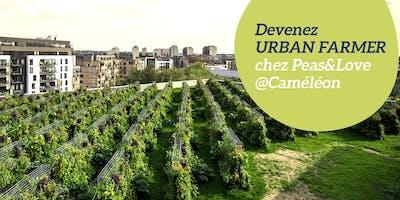 Visite de la ferme Peas&Love@Toit de Caméléon
