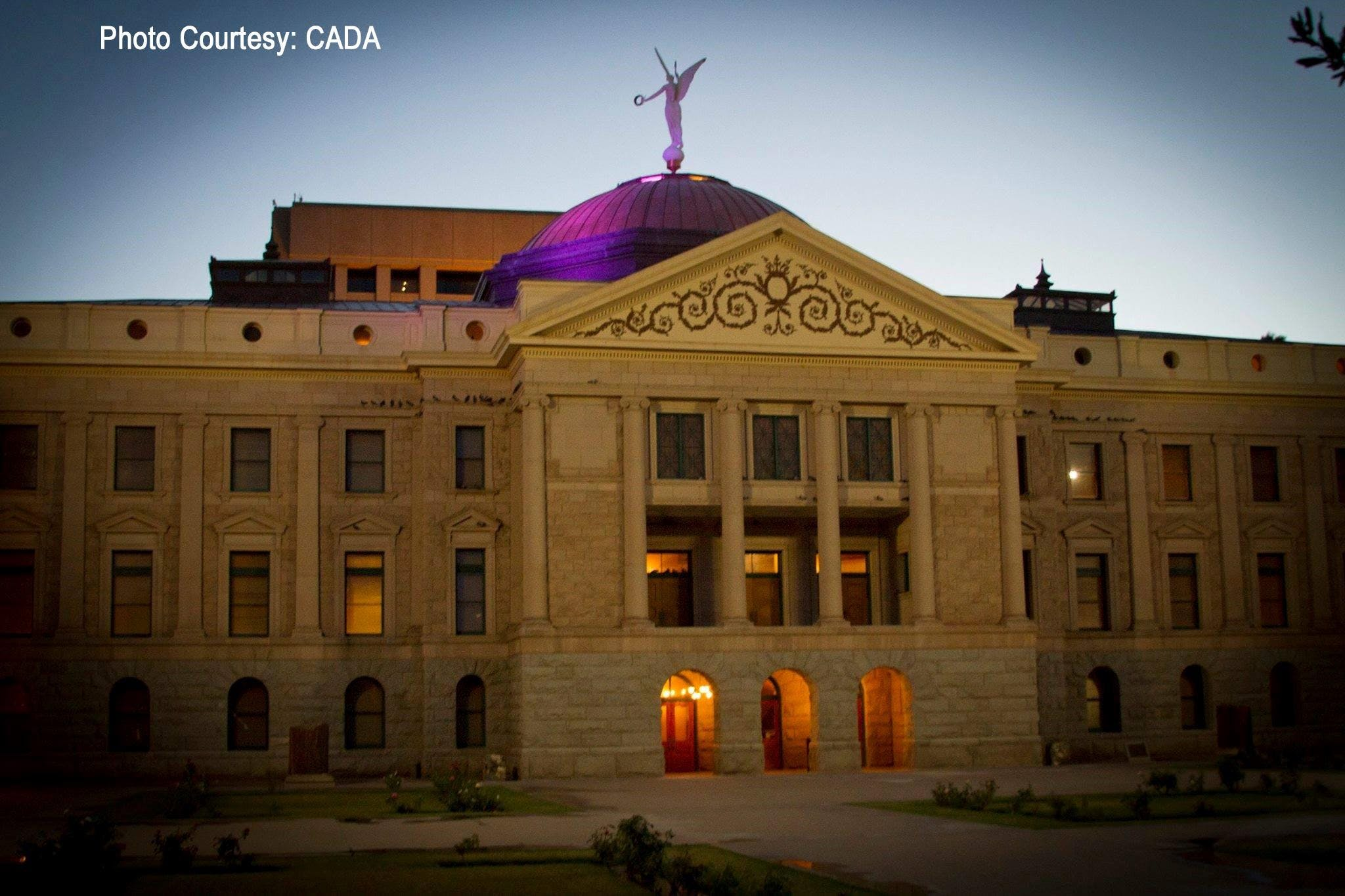 Shine A Light on All Dementias:  Turning the Capitol Purple