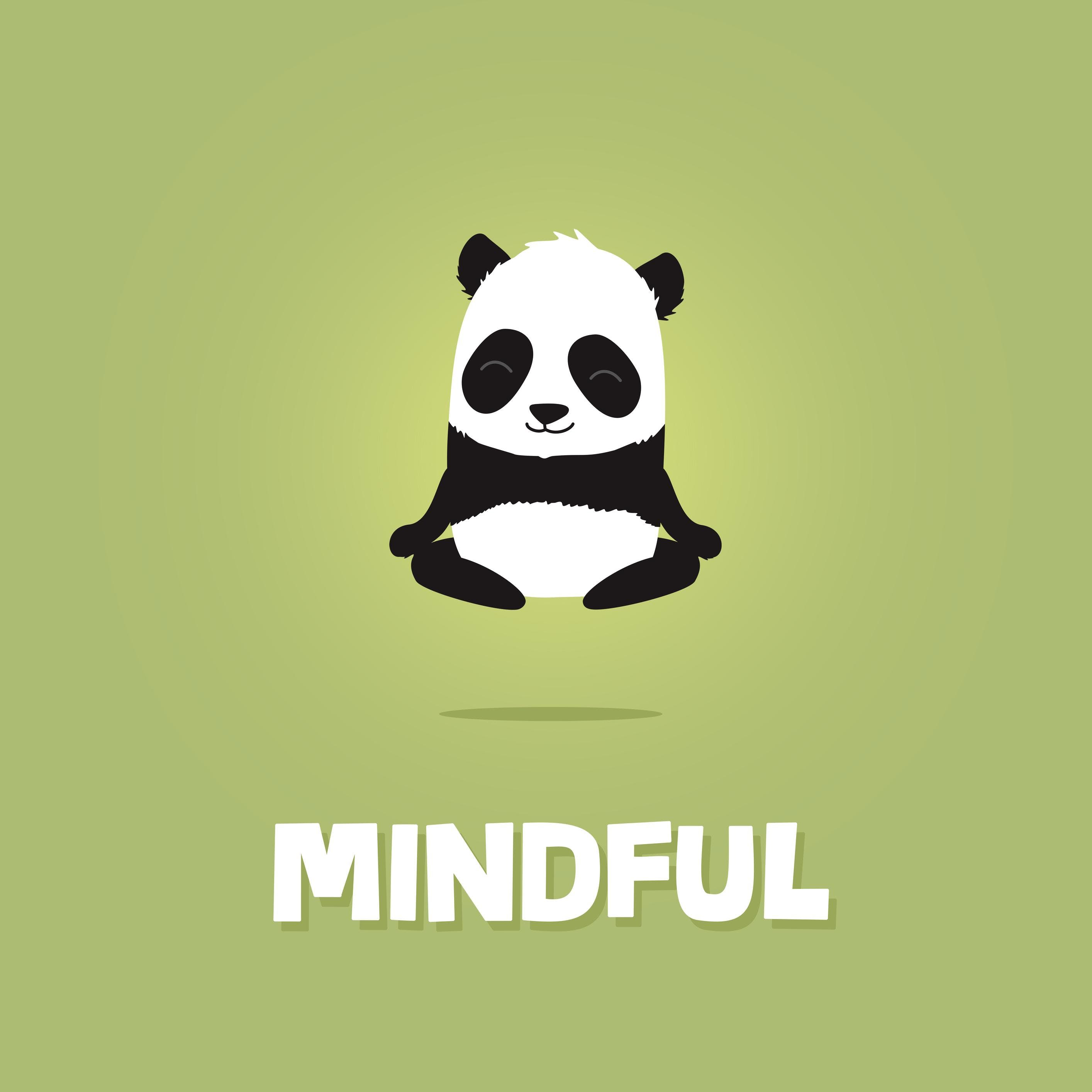 Mindful Mindful Panda workshop foundation