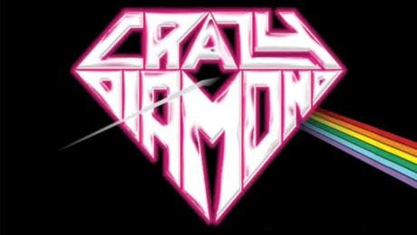 Crazy Diamond - Live in the Flesh