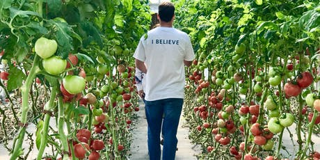 Pick Your Own Tomatoes tickets