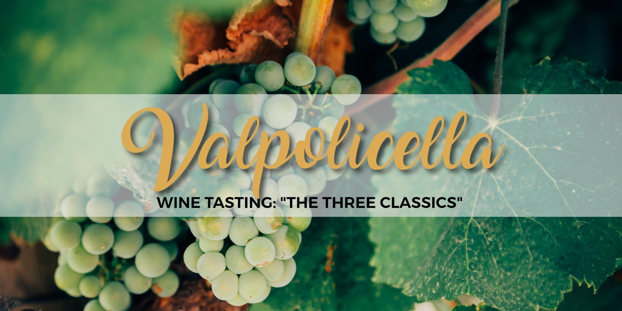 "VALPOLICELLA WINE TASTING: ""THE THREE CLASSICS"" - La Botteghetta's tour"