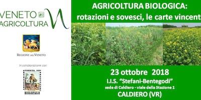 AGRICOLTURA BIOLOGICA: rotazioni e sovesci