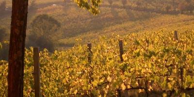 FIAIP e territorio: Pranzo tra le Vigne con degustazione di Vini