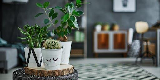 Love Your Houseplants