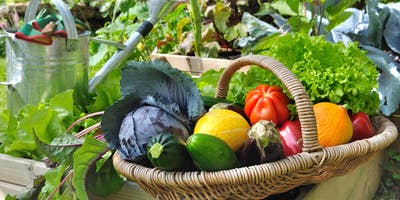 Seasonal Vegetable Gardening