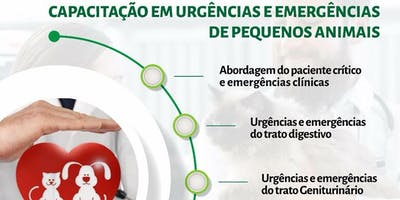 Urgências e Emergências em Pequenos Animais (12ª Edição)