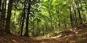 Drawdown Land Use Summit: Gaining ground on global...