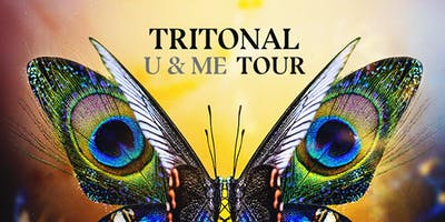 Tritonal @ Ace of Spades