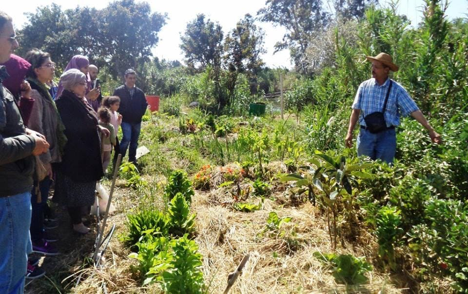formation permaculture urbaine n2 jardin potager - Jardin Permaculture