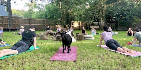 Summerville Goat Yoga at Flowertown Charm Mini-Farm tickets