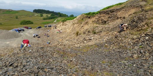 Upper Gilwern Quarry, Wales - GEOLOGICAL AND FOSSIL FIELD TRIP