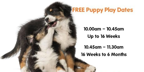 Puppy Play Dates 2019 -(16 Weeks Up to 6 Months Old) tickets