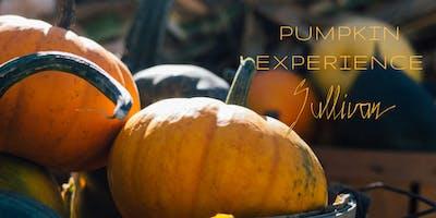 Pumpkin Experience - Sullivan