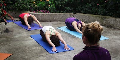 Butterfly Haven Yoga