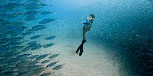 Ocean Film Festival World Tour - Darwin Deckchair Cinema 18 June 2019