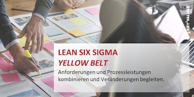 Lean Six Sigma Yellow Belt - Anforderungen und Prozessleistung kombinieren und Veränderung begleiten