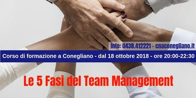 Le 5 Fasi del Team Management