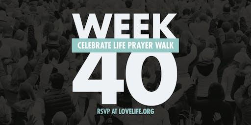 WEEK 40 - Celebrate Life Prayer Walk