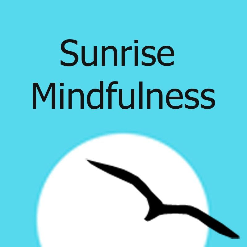 Free Mindfulness Based Stress Reduction Mbsr Orientation At Skin