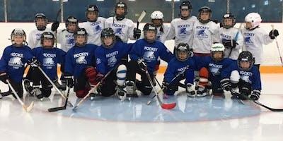 Christmas hockey camp (Toronto): December 31/18 & January 2-4/19 (4 days)